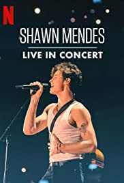 Shawn Mendes Live in Concert (2020)